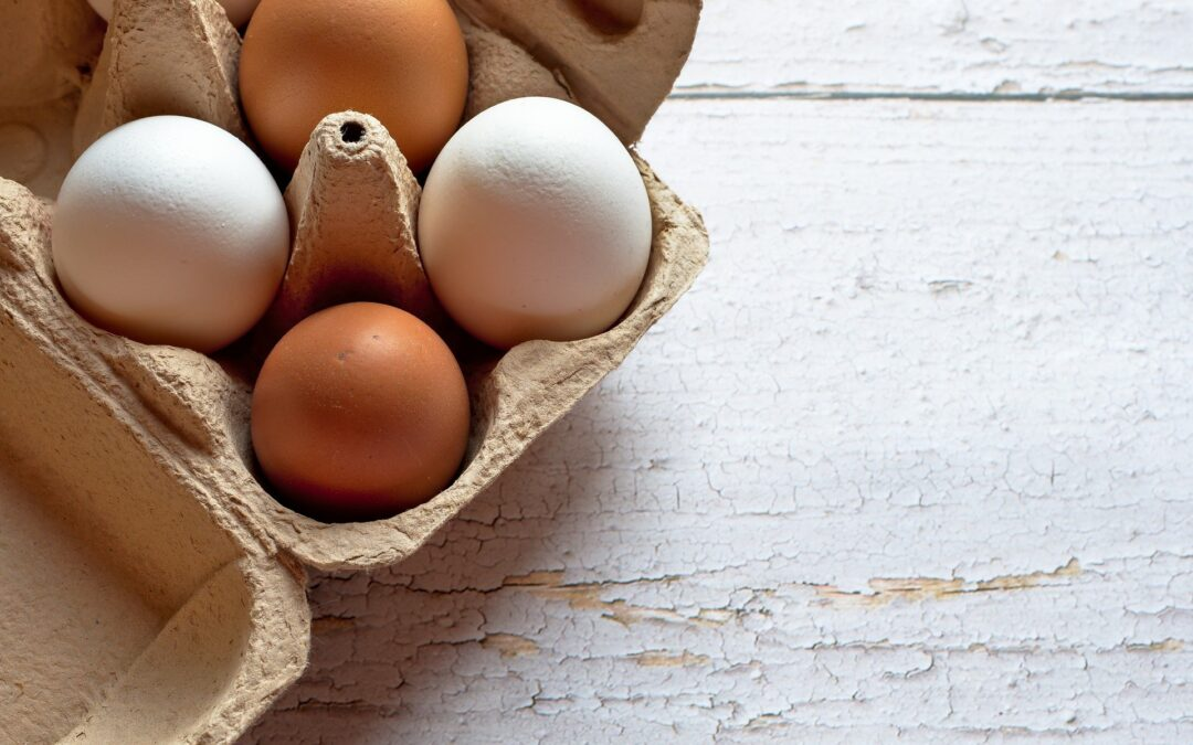 Mocne skorupki jajek
